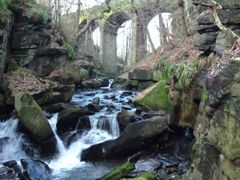 Healey Dell Natural Reserve