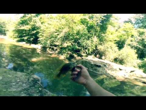 Creek Fishing Mississippi!