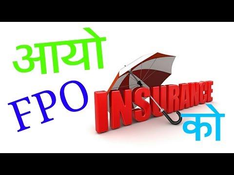 आयो FPO इन्स्योरेन्स को    share market