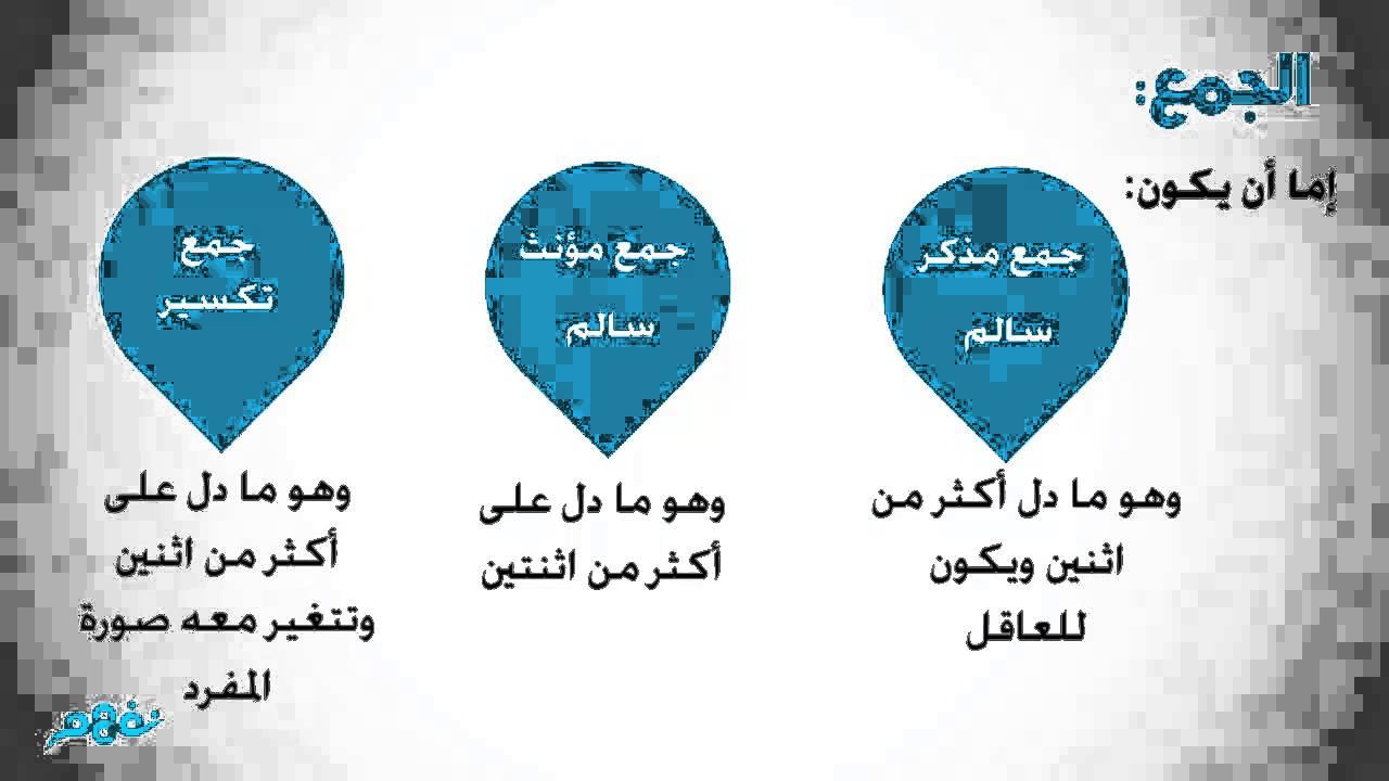 الاسم المفرد والمثنى والجمع نحو الصف الرابع الابتدائي الترم الثاني المنهج المصري نفهم Youtube