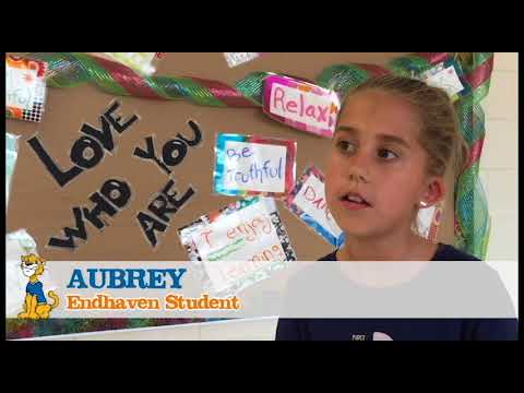 Endhaven Elementary School Fundraiser Video