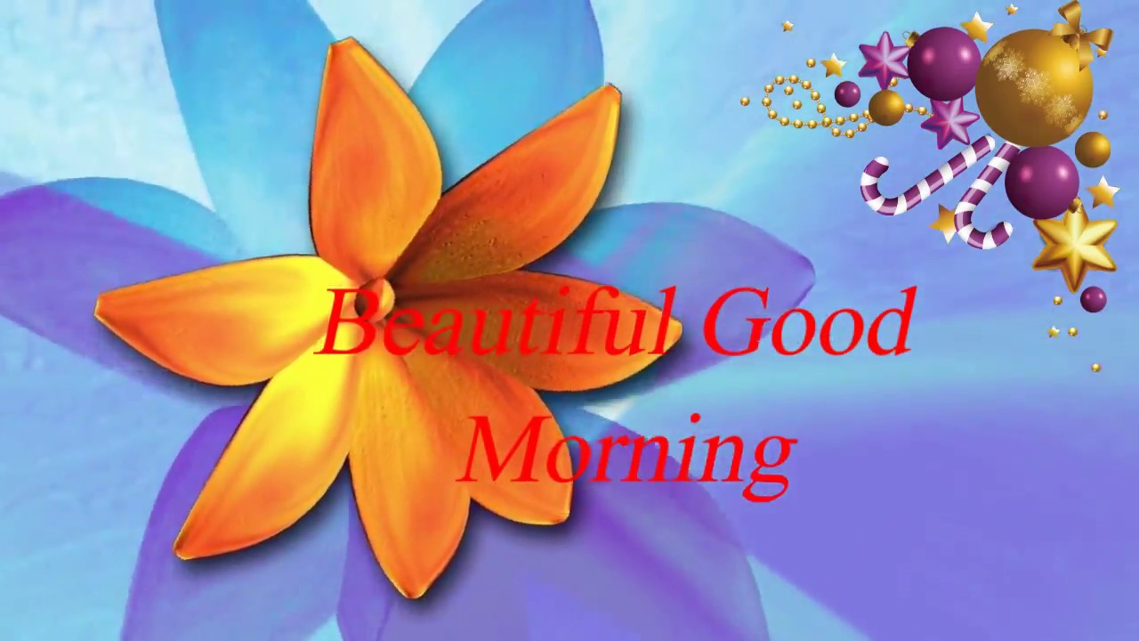 Beautiful Good Morning Wishes With Flowers To Himher Whatsapp Video