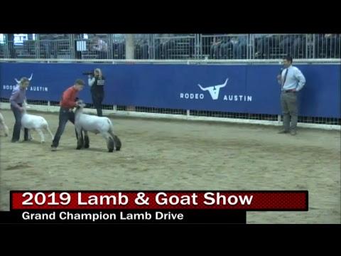 2019 Junior Market Lamb & Market Goat Show