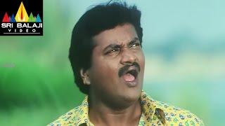 Mr.Errababu Movie Comedy Scenes Back to Back | Sivaji, Sunil, Roma | Sri Balaji Video
