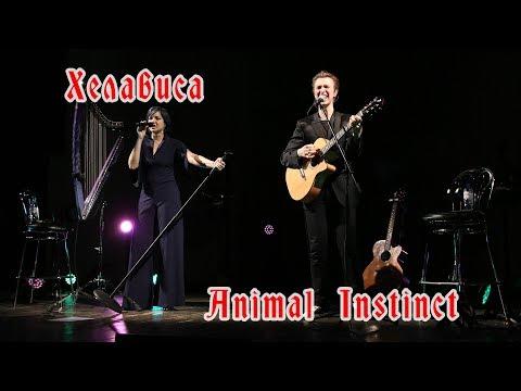 Хелависа - Animal Instinct (The Cranberries cover, 19.01.2018, ММДМ)