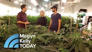 How Legalized Marijuana Is Changing One California Town | Megy…