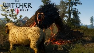 Witcher 3 Wild Hunt - Griffin Boss Fight (PC Max Settings Gameplay)