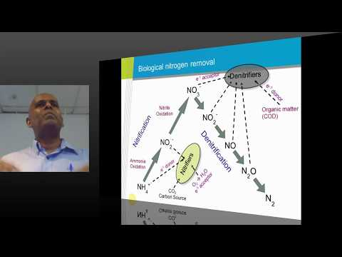 GUEST LECTURE: Biological Treatment of Wastewater – Challenges and Some Solutions