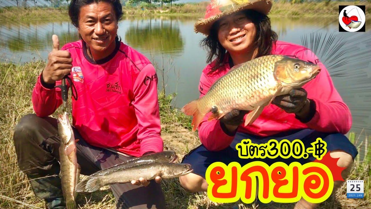 ยกยอ ฟาร์มปลาเก่า ►Fishing lifestyle Ep.481