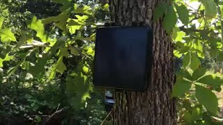 homestead driveway alarm dakota alert 2500 product review dakotaalert