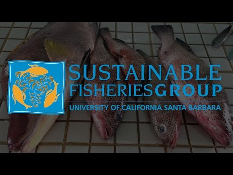 Sustainable Fisheries Group at UCSB