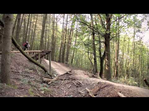 Kamil Tatarkovic - Autumn Riding