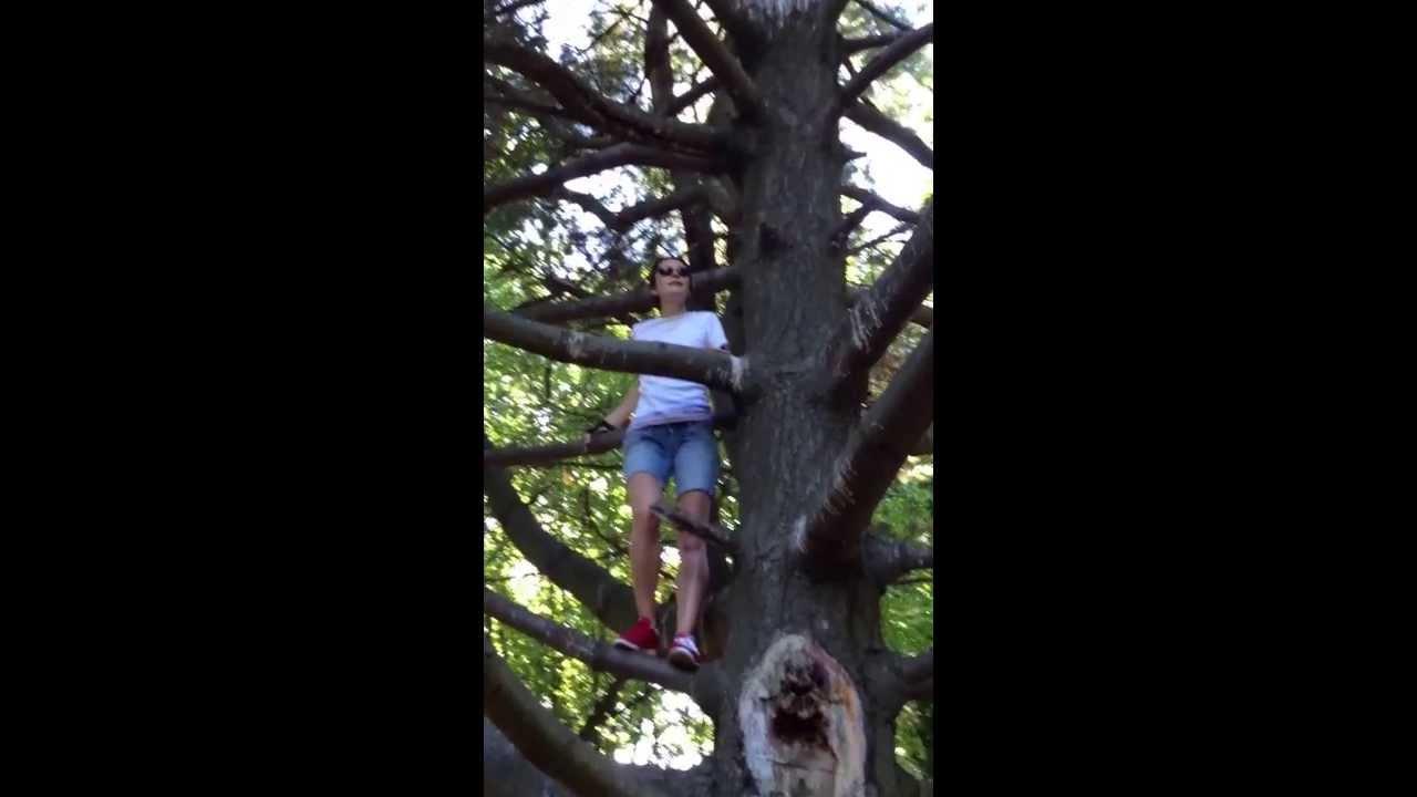 выебал под деревом смотреть совсем