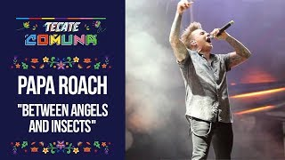 Tecate Comuna 2018 - Papa Roach - Between Angels And Insects