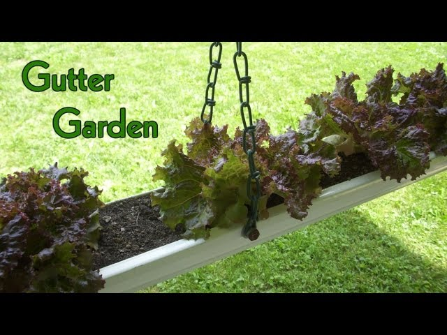 How to Make a Hanging Gutter Garden: 9 Steps (with Pictures)
