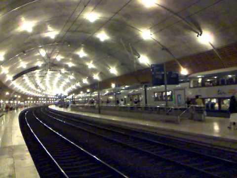 TER train arriving at Gare du Monaco
