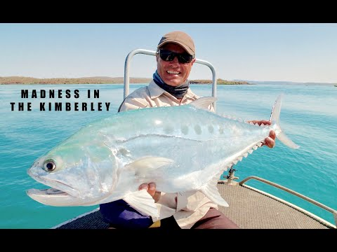 QUEENFISH AND SHARK MADNESS IN THE KIMBERLEY'S