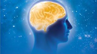 Техника ТМ Махариши раскрывает скрытые резервы мозга