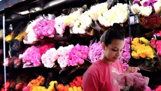 surprising-carmen-with-flowers-and-food
