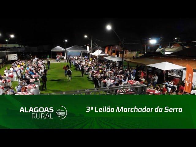 3ª Leilão Marchador da Serra arrecada mais de R$ 345 mil