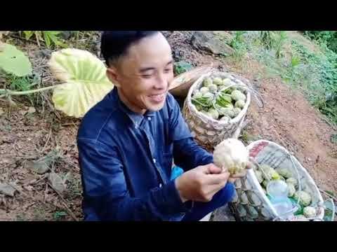 PHỦ KHAI PHONG TẬP 76 VIETSUB NGUỒN NTP9https://www.dailymotion.com/video/x7l06ti?playlist=x6gu33