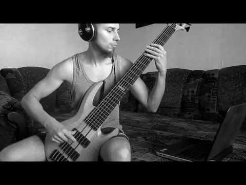 Quo Vadis - Silence Calls the Storm (bass cover)