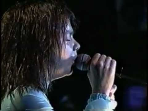 Björk - Free Jazz Festival, Brazil (1996) (full concert - pro-shot)