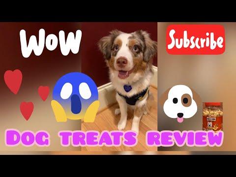 dog-treats-review-(milk-bone-marosnacks-dog-treats)-w/-a-smiling-dog 강아지-간식-리뷰🐶