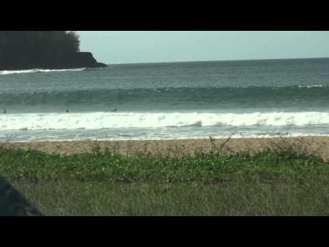 Surfing trip in Hawaii Island