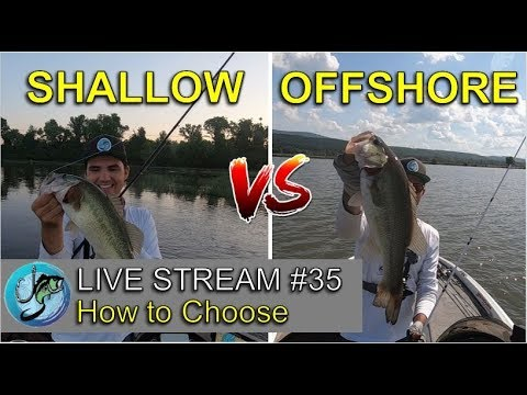 Better To Fish Offshore Or Shallow? | Fish The Moment Live Stream #35