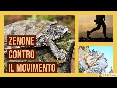 Zenone: i paradossi contro il movimento