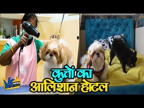 ये है देश का पहला कुत्तों का होटल, सुविधाएं देखकर दंग रह