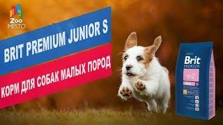 BritPremiumJunior S корм для собак малых пород| Обзор BritPremiumJunior S корм для собак малых пород