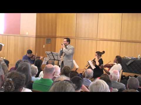 Jia-Yi He and String Quartet Harmonica Concert