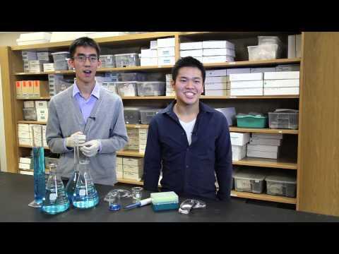 IB World School Welcome Video