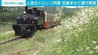 房総里山トロッコ列車が再開 定員は半分に・・・(20/06/20)