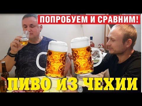 Пиво из Чехии. Обзор и дегустация пива из Чехии