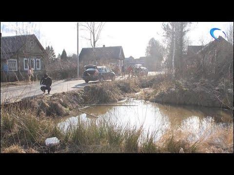 В Крестцах восьмилетний мальчик утонул в водоеме недалеко от собственного дома