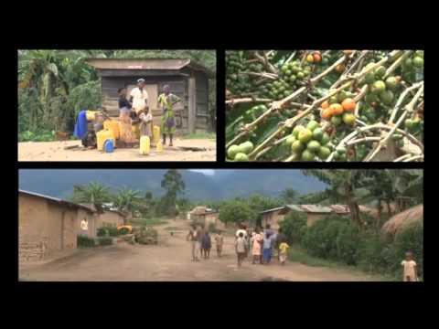 S'unir pour demain - La défense des intérêts paysans - RD Congo