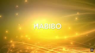 Habibo  Veysel (SpeedUp)