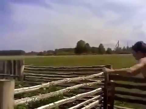 Короткие ролики Прикольные и смешные видеоролики