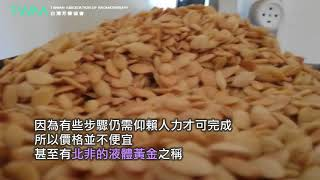 台灣芳療協會 北非的液體黃金 摩洛哥堅果油
