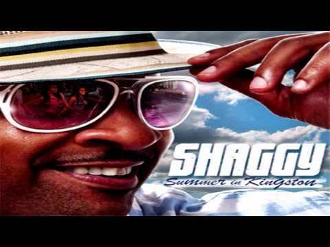 Shaggy - Dame ★ NEW 2011 ★