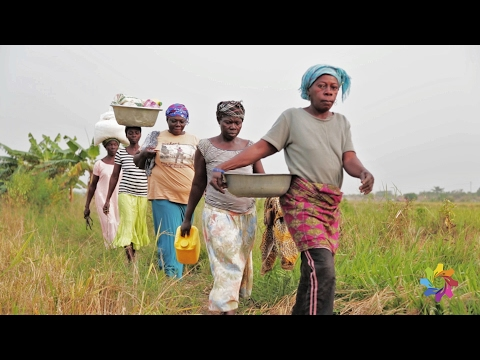Championing Innovation on Ghanian Farms