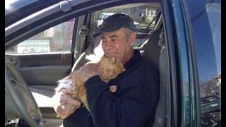 22年間もの間、お金と時間を全て近所の野良猫の為に費やしてきた元軍人...