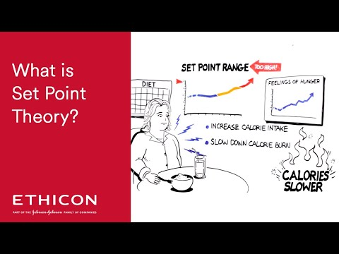 MeetAmanda, What is Set Point Theory – Short Video