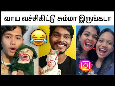 Instagram Viral Video