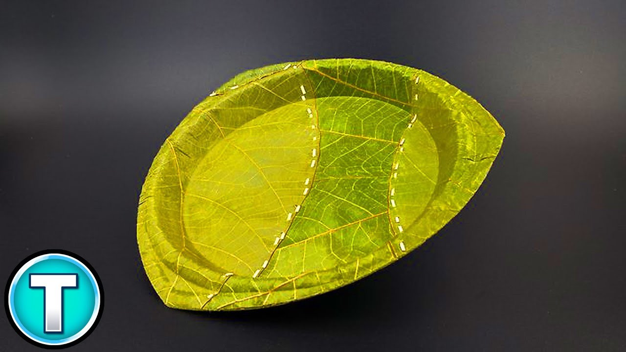 Attractive Leaf Plates - YouTube HY37