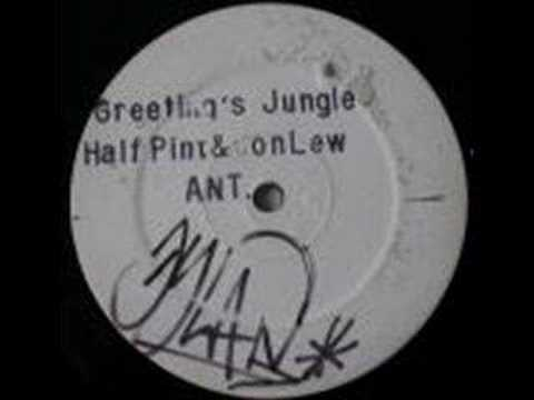 Half pint greetings jungle jet star records ant 1 youtube half pint greetings jungle jet star records ant 1 m4hsunfo