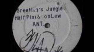 Half Pint - Greetings Jungle - Jet Star Records (ant 1)
